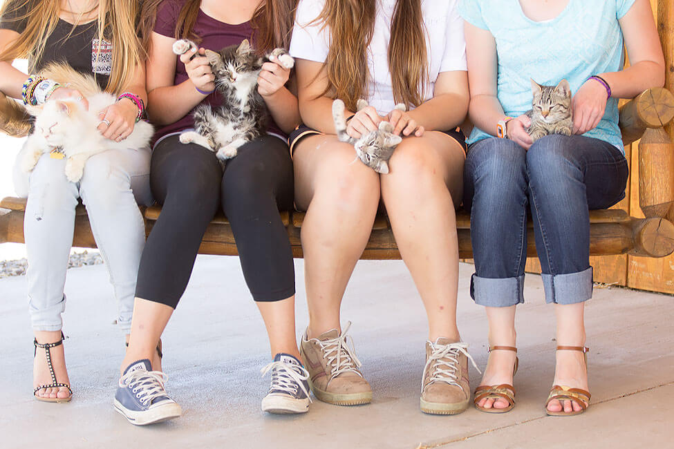 A group of New Haven Students each holding a kitten on their lap