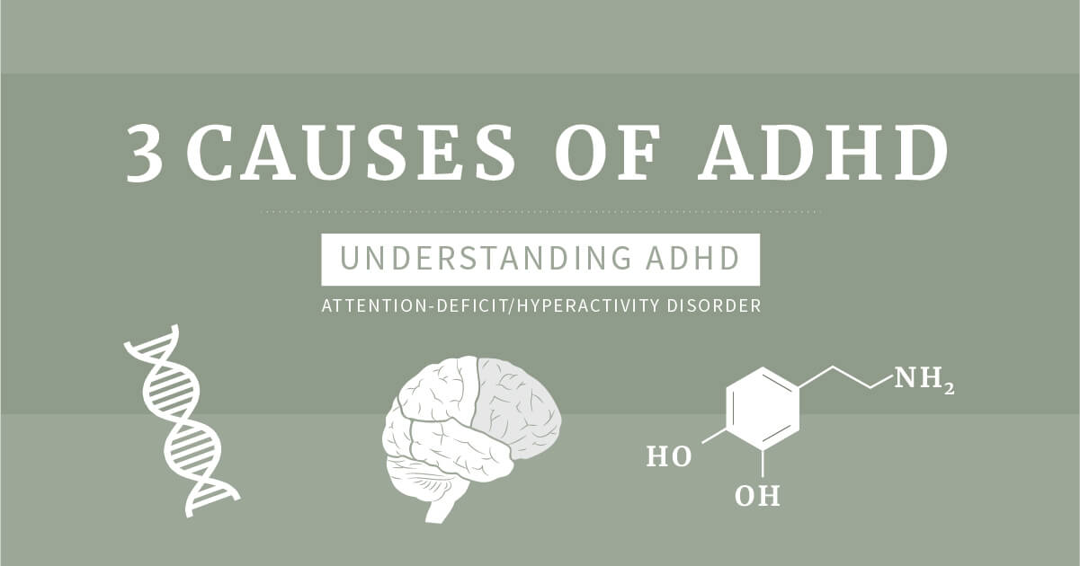 The 3 Causes    of ADHD
